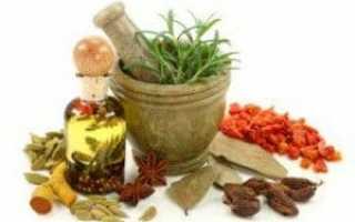 Лекарственные травы и сборы от цистита