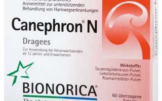 Таблетки от цистита Канефрон: инструкция по применению, дозировка