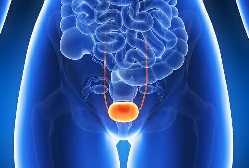 Цистон — эффективное противовоспалительное и мочегонное средство