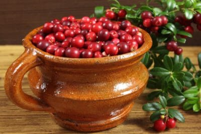 ягоды толокнянки