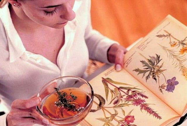 Травы при цистите у женщин: список